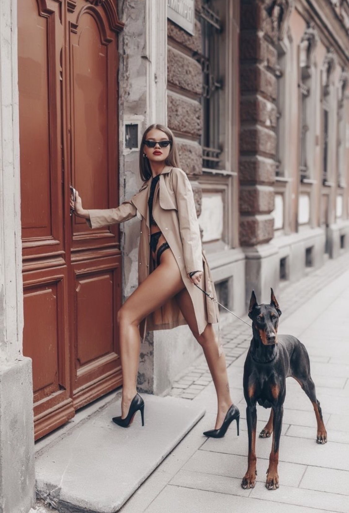 perfect legs fashion doberman